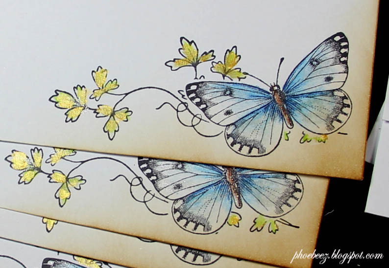 Vlinder detailkopie