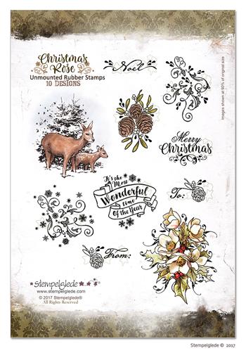ChristmasRoseUMpackaging