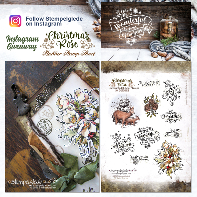 _00000_Giveaway_ChristmasRoseInsta_blog
